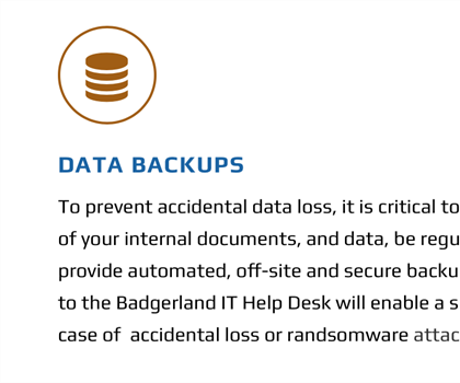Badgerland Data Backup Plan